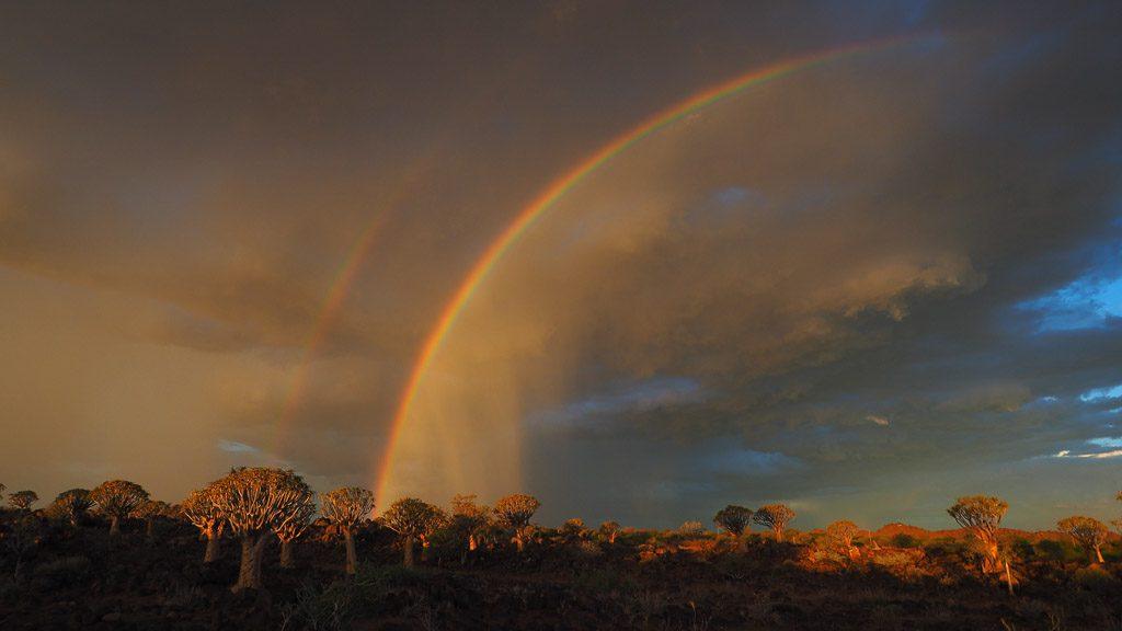 Doppelter Regenbogen im Köcherbaumwald bei Keetmannshoop