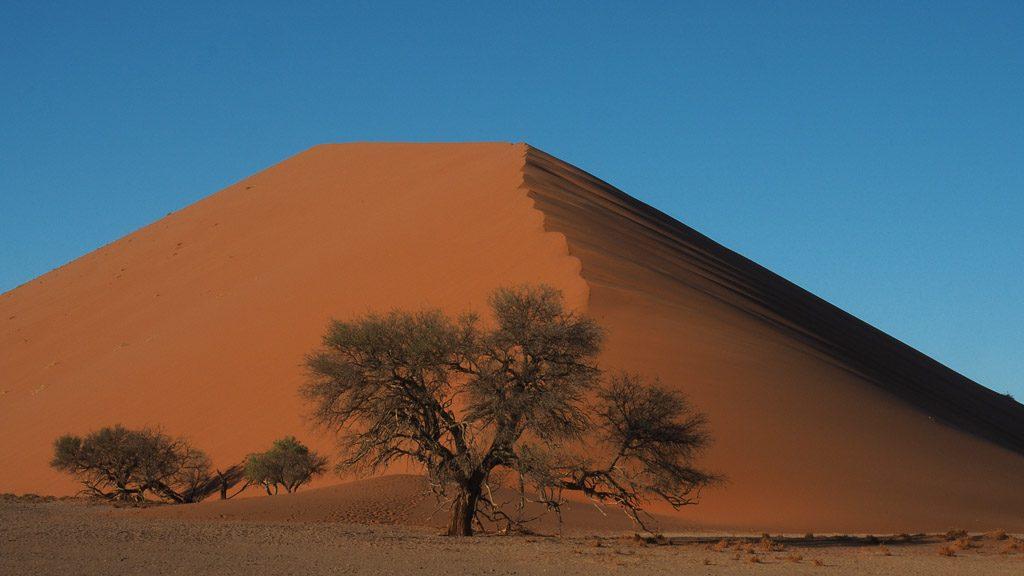 Traumhafte Düne vor der Dune 45 im Namib Naukluft Park in Namibia
