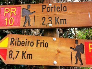 Madeira - Wanderung von Ribeiro Frio nach Portela