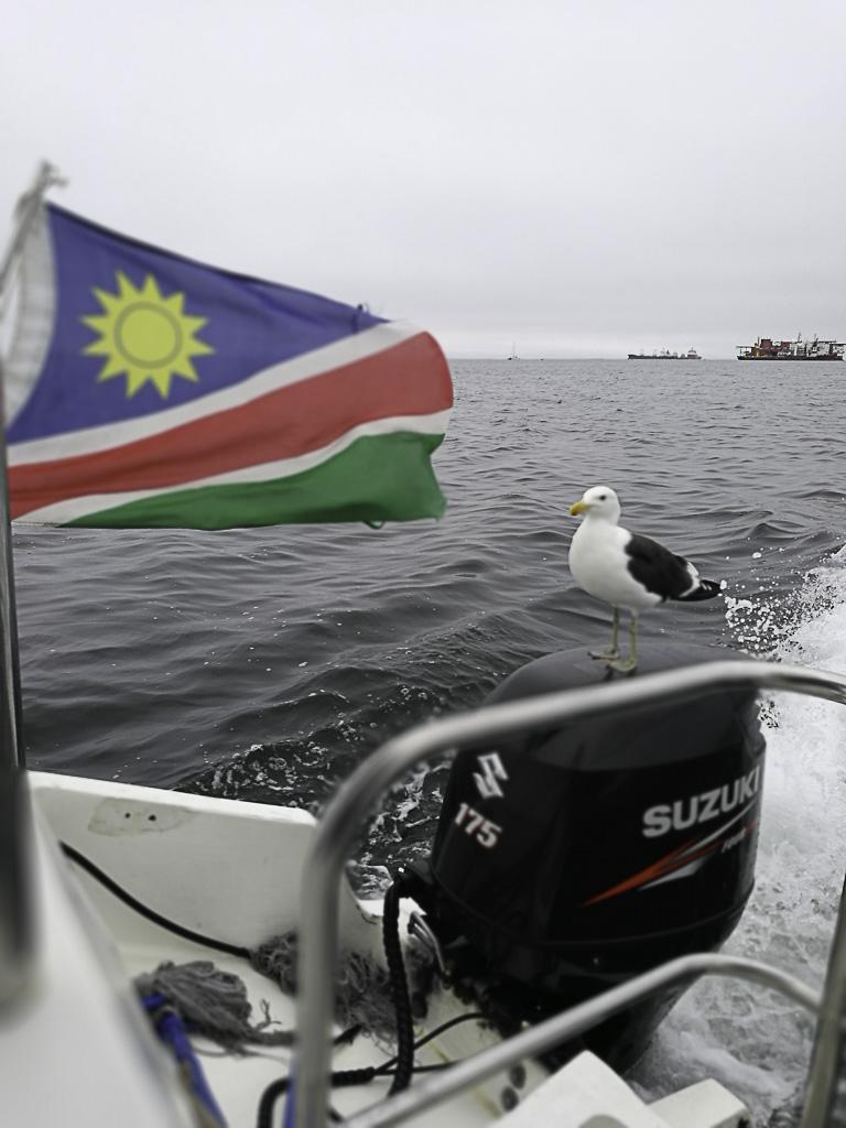 Flagge Namibias mit Möwe