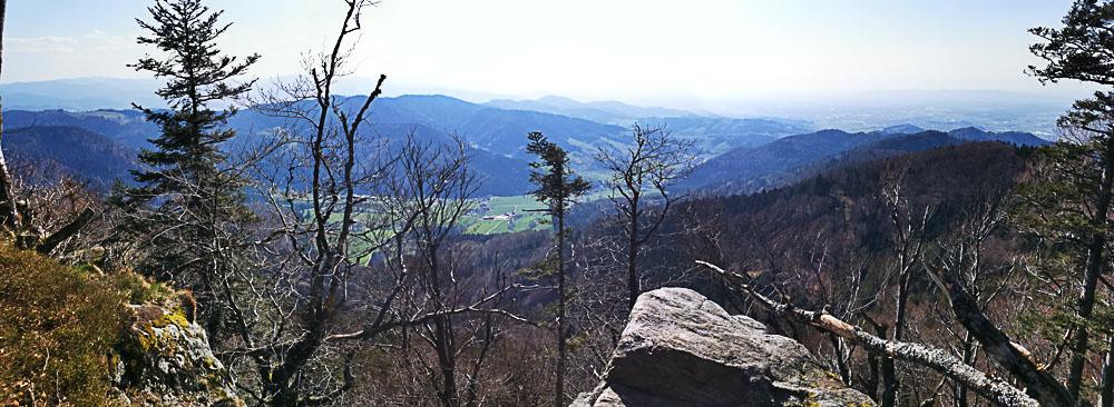 Foto: Panoramafoto vom Kandel im Schwarzwald mit Blick in das Elsass