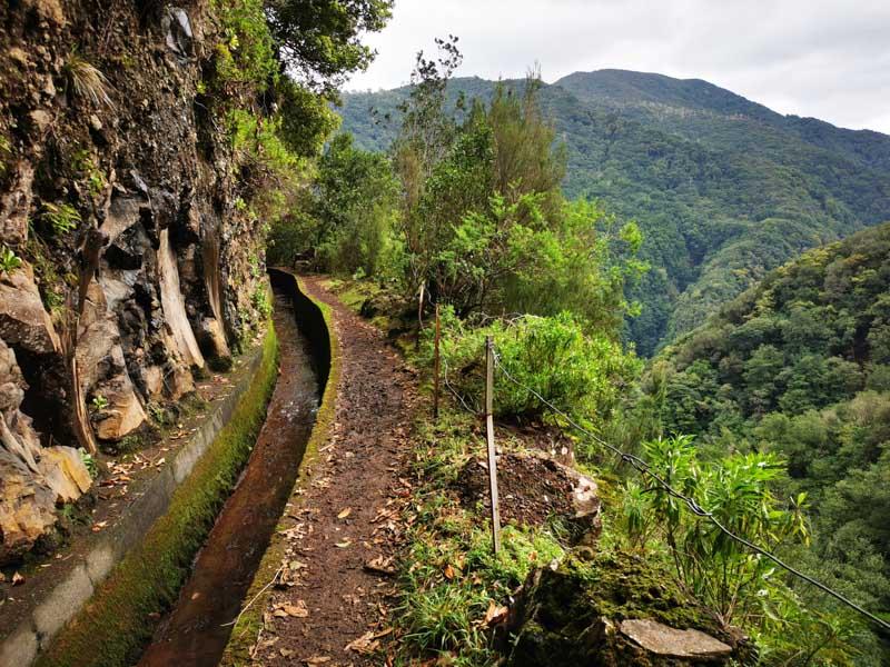 Reiseblog Bericht Madeira: Foto-Levada da Central in der Schlucht der Ribeira de Janela