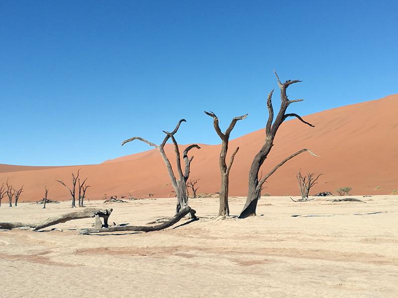 Sossusvlei in Namibia, ein Bericht im Reiseblog von Thomas Lechler
