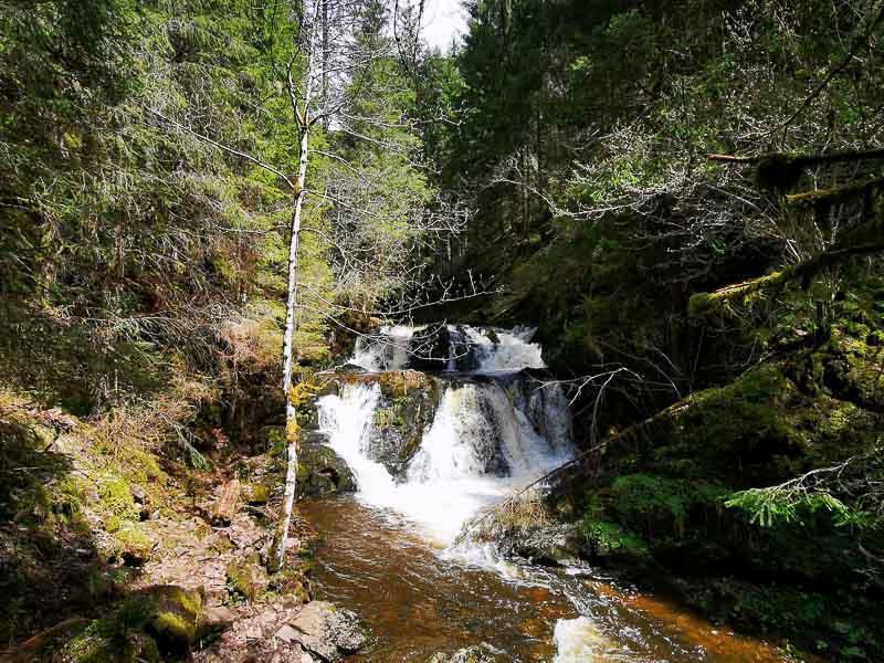 Foto Wasserfall in der Rötenbachschlucht