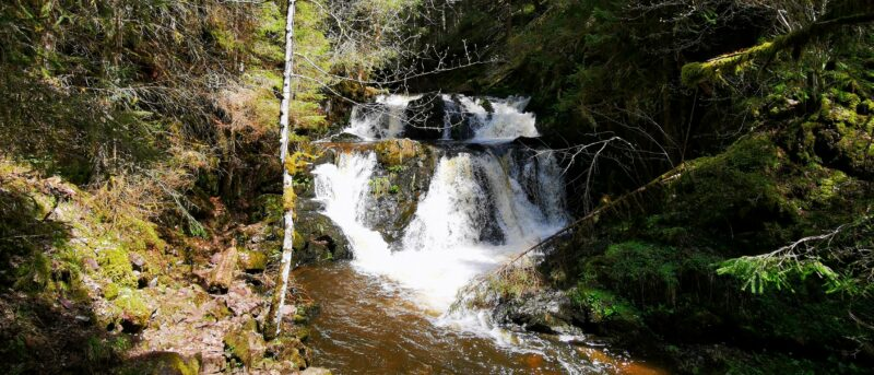 Wasserfall in der Rötenbachschlucht im Schwarzwald