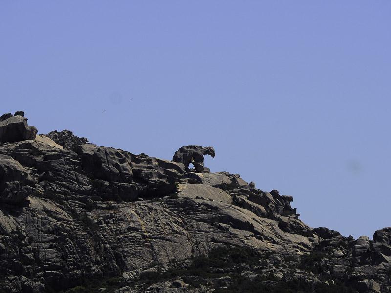 Der berühmte Bär von Palau während unserem Segeltörn Sardinien