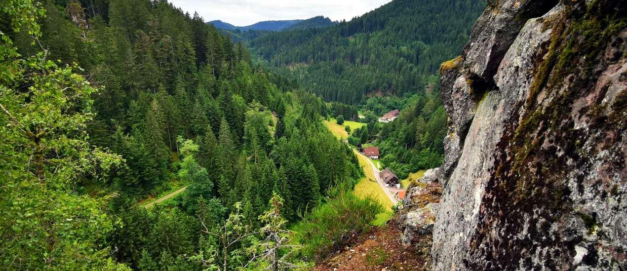 Unterwegs im Schwarzwald - Wolftal
